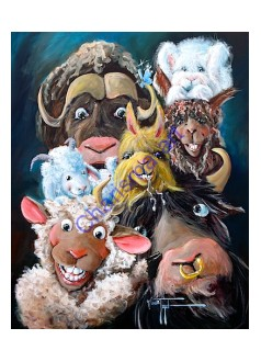 Sheep Incognito Wool Gathering PRINT