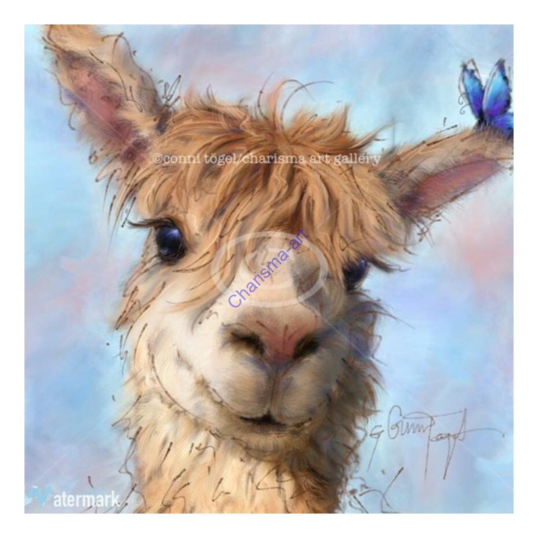 Quot Al Quot Paca Alpaca Llama